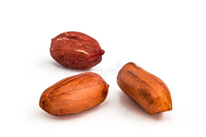 Drei Erdnüsse - lokalisiert stockbilder