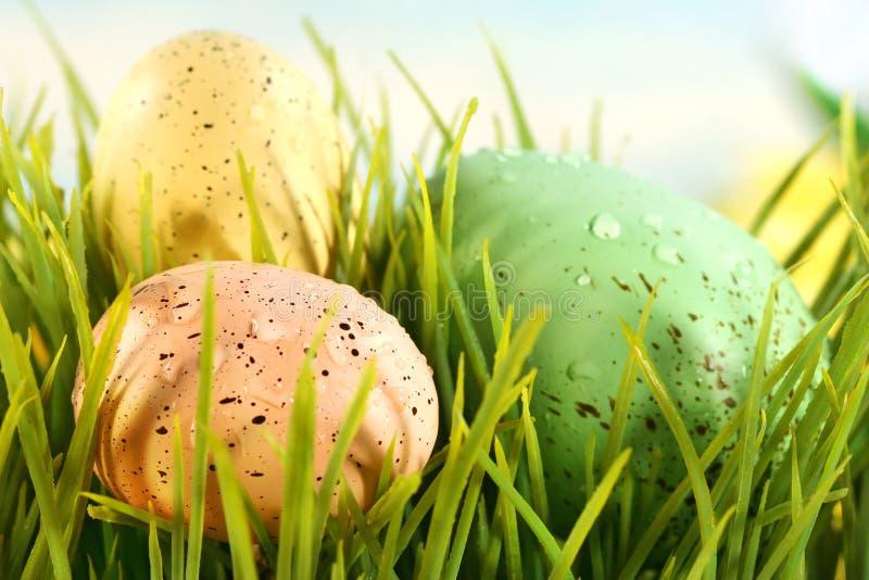 Drei farbige Eier lizenzfreie stockfotos