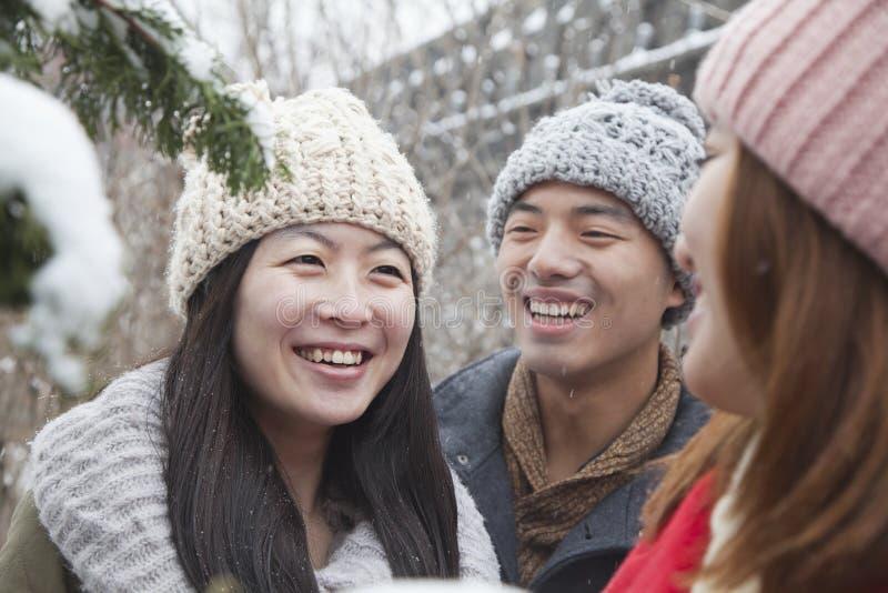 Drei Freunde, die in einem Park im Schnee sprechen lizenzfreies stockfoto