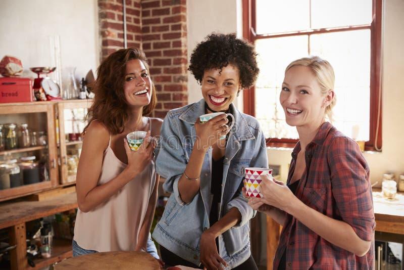 Drei Freundinnen in der Küche schauen zur Kamera, Abschluss oben lizenzfreie stockfotos