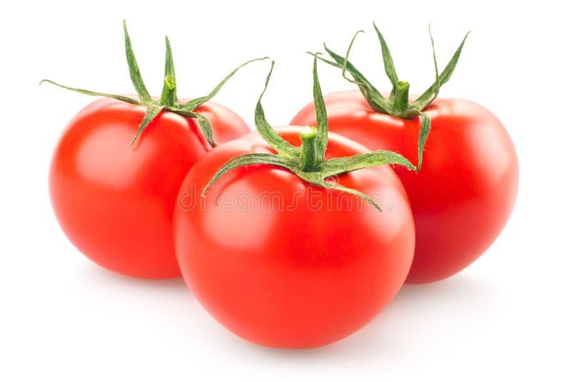 Drei frische Tomaten mit den grünen Blättern lokalisiert auf weißem Hintergrund stockfoto