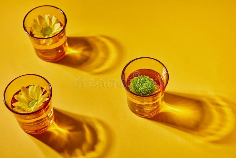 Drei Gläser Wasser und Blumen auf einem gelben Papierhintergrund mit Schatten lizenzfreie stockfotos
