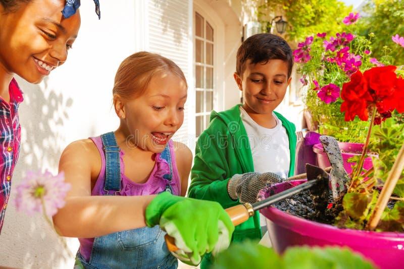 Drei glückliche Freunde, die um Blumenanlagen sich kümmern lizenzfreie stockfotos