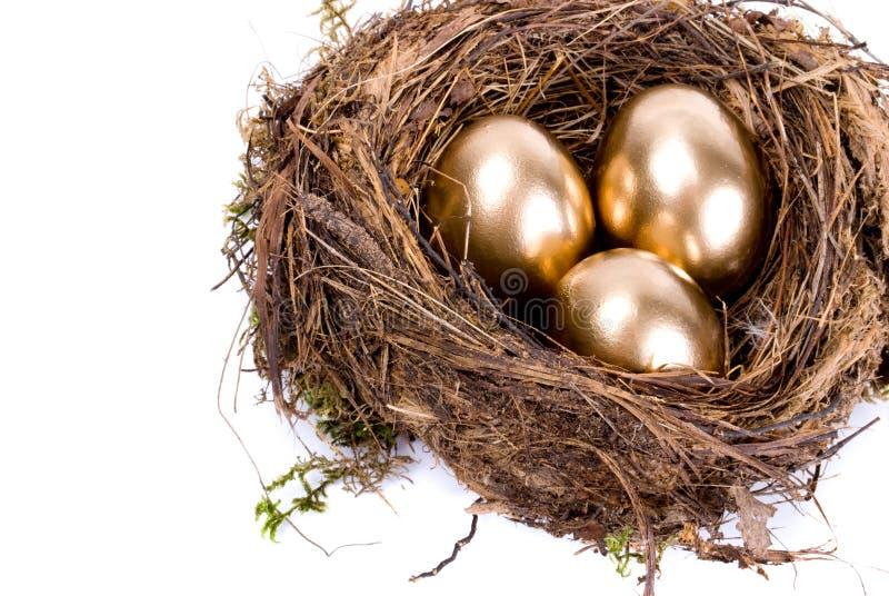 Drei goldene Eier im Nest lizenzfreies stockbild