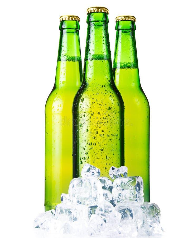 Drei grüne Flaschen Bier mit dem Eis getrennt stockbild