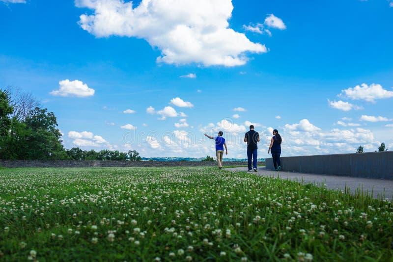 Drei indische Freunde gehen in einen Park mit Blumen und blauem Himmel lizenzfreie stockfotos