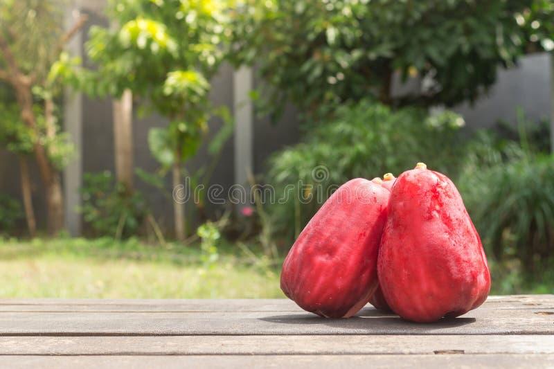 Drei Jambu Guave auf hölzernem Boden im Garten lizenzfreie stockfotos
