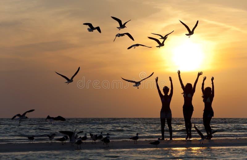Drei junge Frauen, die auf Strand am Sonnenuntergang tanzen stockfoto