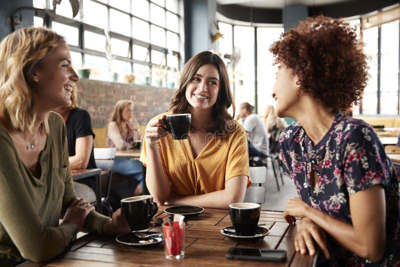 Drei junge Freundinnen, die Sit At Table In Coffee-Geschäft und -gespräch treffen lizenzfreie stockfotos