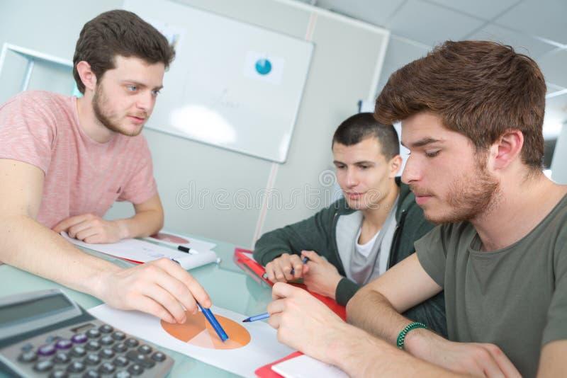 Drei junge männliche Studenten, die Kreisdiagramm betrachten lizenzfreie stockfotografie
