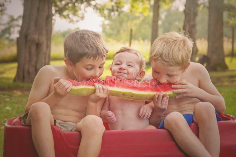 Drei Jungen, die Wassermelone essen stockbild