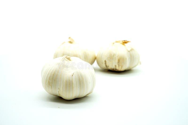 Drei Köpfe Knoblauch auf einem weißen Hintergrund, Isolat lizenzfreie stockfotos