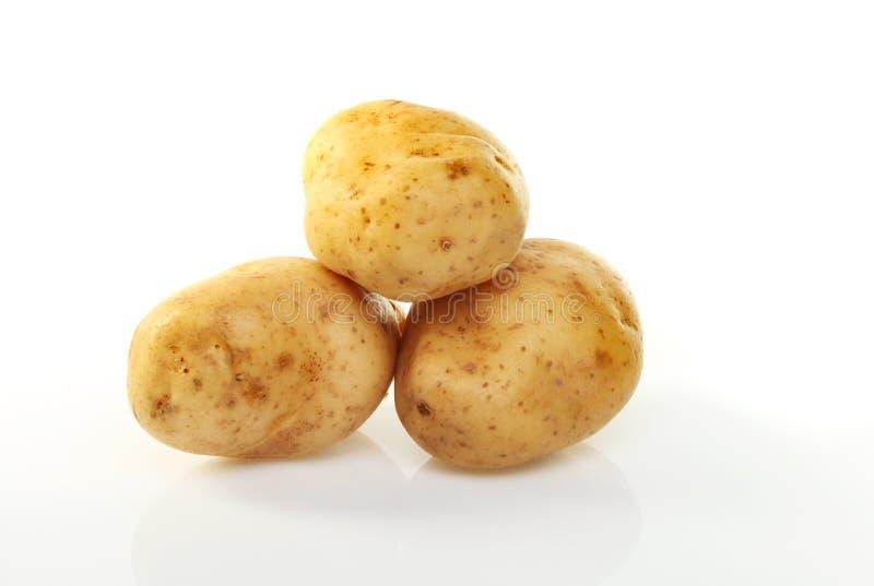Drei Kartoffeln lizenzfreie stockbilder