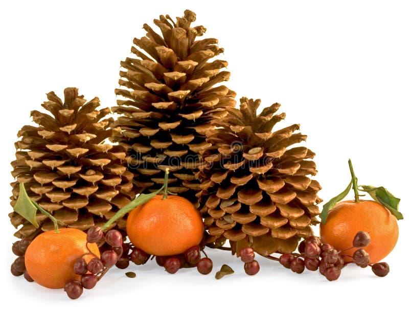 Drei Kiefer-Kegel mit Beeren, Pinole und Orangen stockfoto