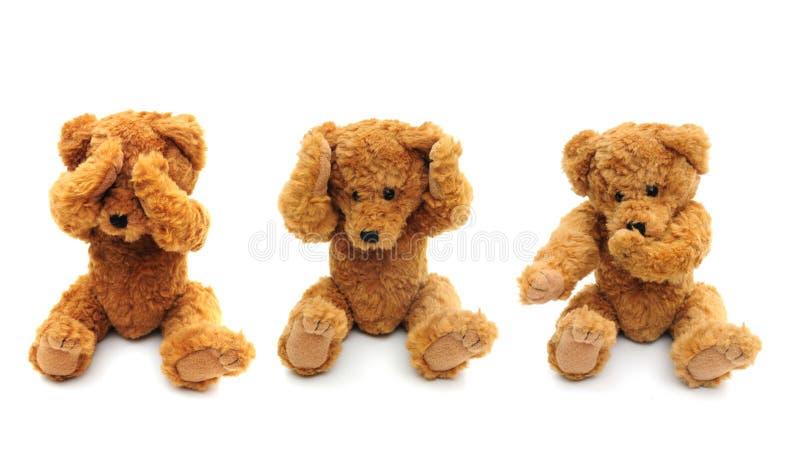 Drei kluge Bären lizenzfreie stockfotos