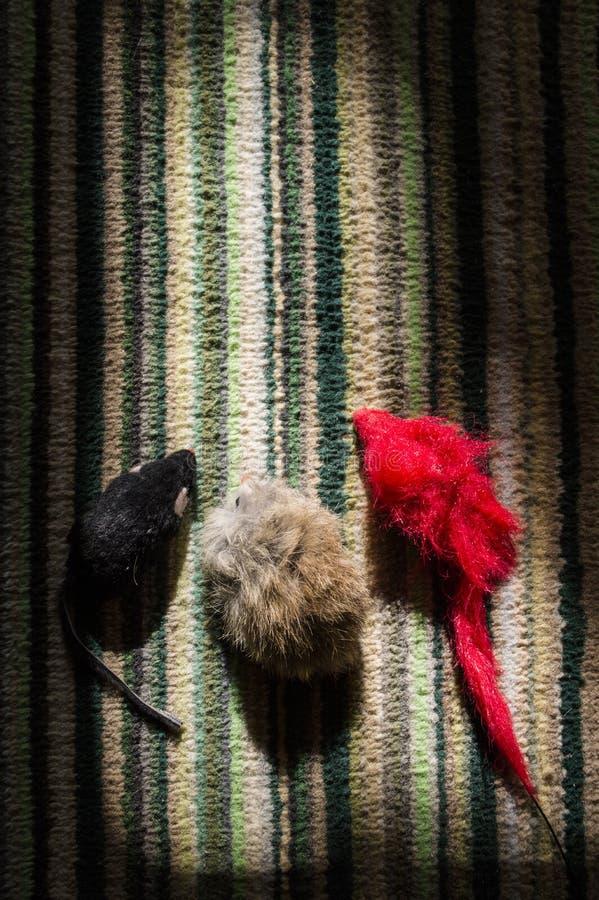Drei Mäuse stockfoto. Bild von entzückend, mäuse, schwarzes - 36498538