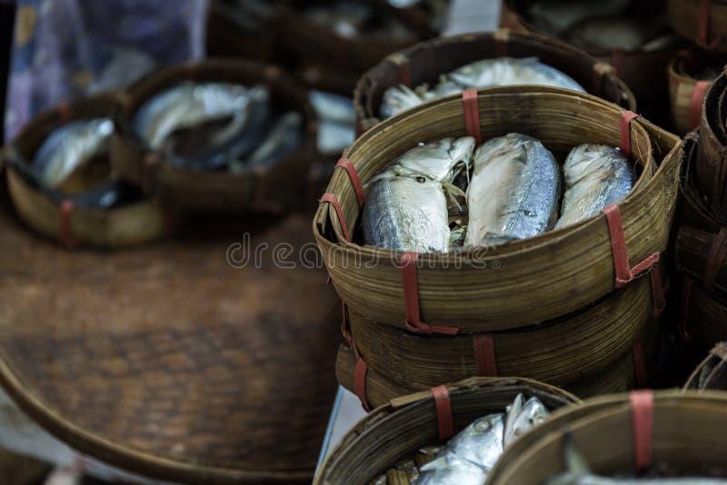 Drei Makrelen lizenzfreie stockbilder