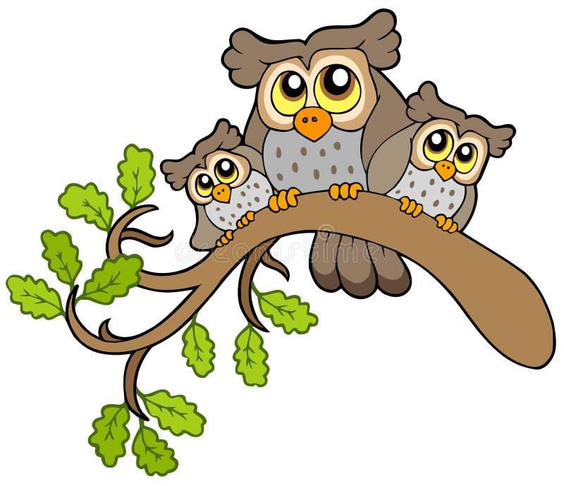 Drei nette Eulen auf Zweig