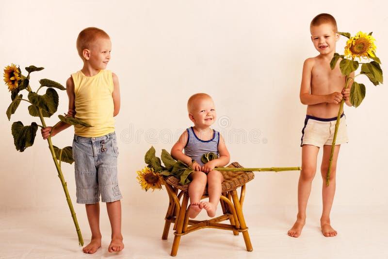 Drei nette nette Jungen in einem Dorfstudio mit Sonnenblumen stockbilder