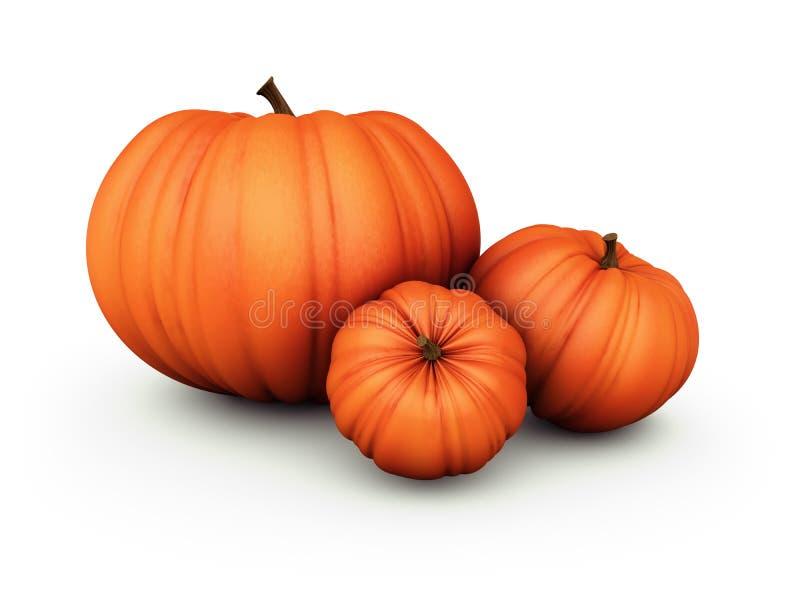 Drei Orangen-Kürbis auf weißem Hintergrund vektor abbildung