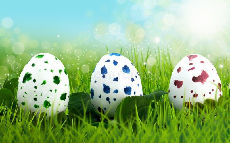 Drei Ostereier, die im langen Gras sich verstecken lizenzfreies stockbild