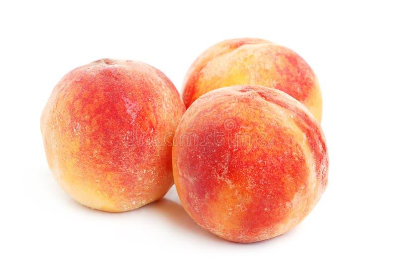 Drei Pfirsiche stockfoto