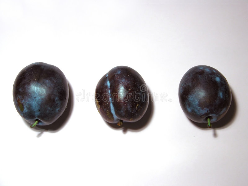 Drei Pflaumen stockfotografie