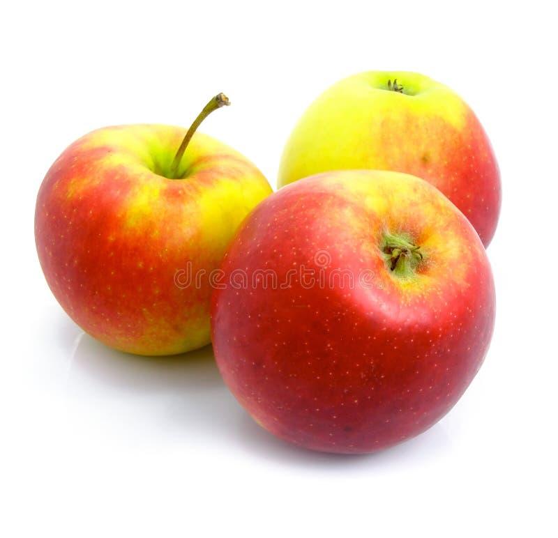 Drei reif durch die Äpfel getrennt stockfotos