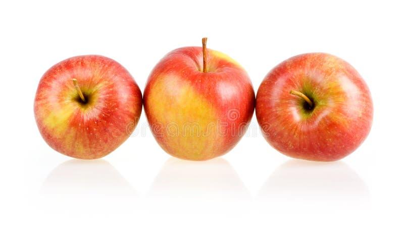 Drei reife rote Äpfel getrennt lizenzfreie stockfotografie