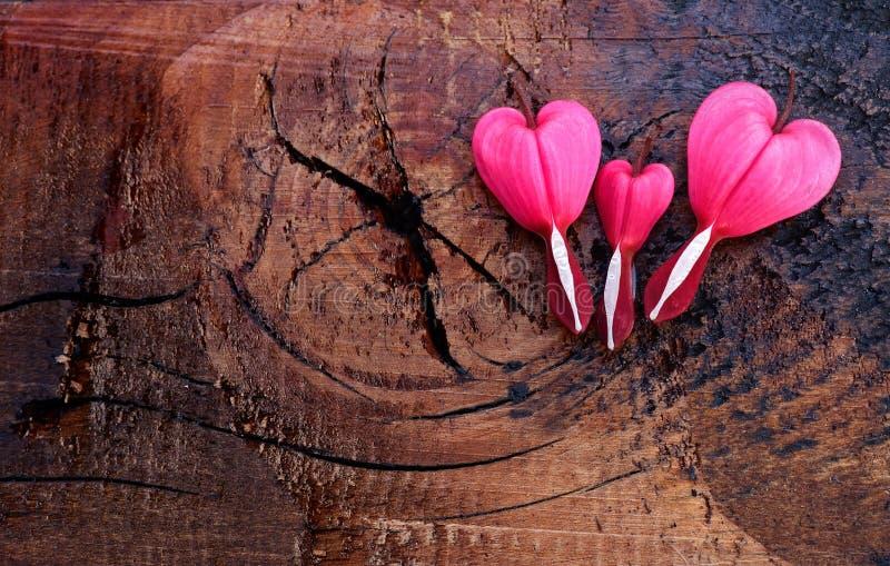 Drei rosa Herzen auf einem hölzernen Hintergrund lizenzfreies stockbild