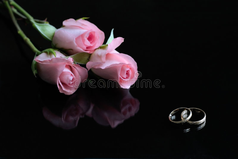 Drei rosafarbene Rosen und Hochzeitsringe reflektierten sich in der schwarzen Oberfläche stockfotos