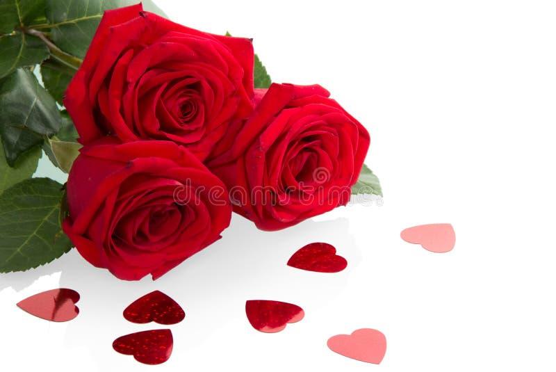 Drei rote Rosen lizenzfreie stockfotografie