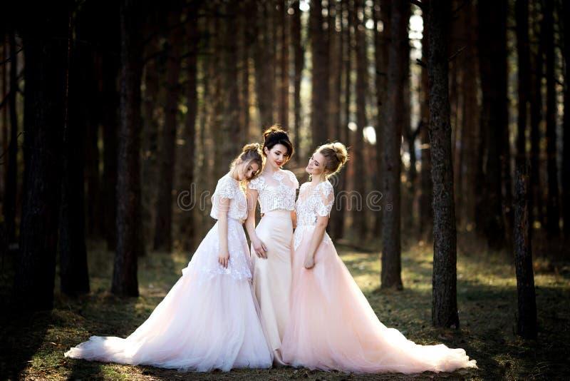 Drei schöne Bräute zusammen lizenzfreie stockfotos
