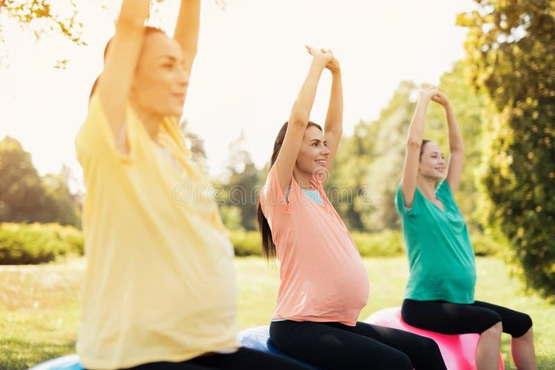 Drei schwangere Frauen sitzen in einem Park auf Yogabällen mit ihren Händen oben lizenzfreies stockbild