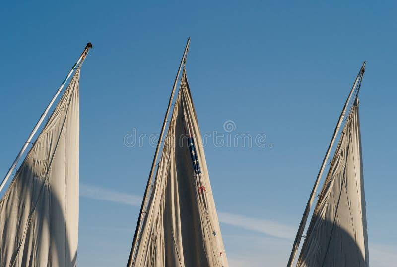 Drei Segel von ägyptischen Segelbooten lizenzfreie stockbilder