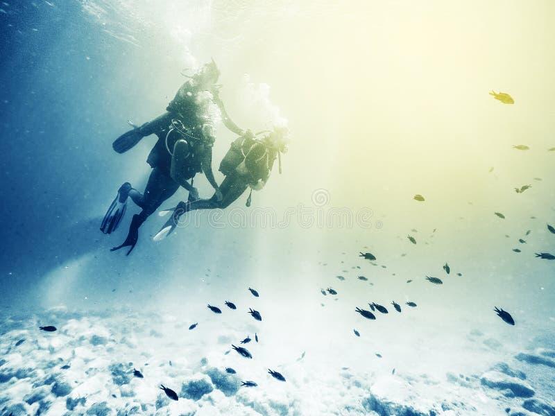 drei Sporttaucher Schwimmen mit Fischen Weinlese-Effekt lizenzfreies stockfoto