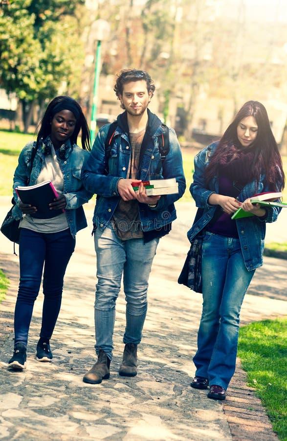 Drei Studenten im Park im Freien lizenzfreie stockfotos
