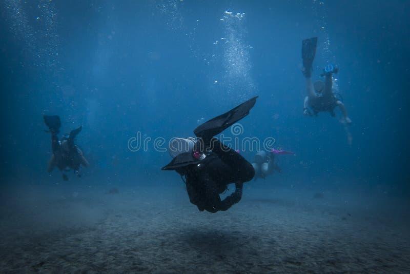 Drei Taucher, die weg von der Kamera schwimmen stockbilder