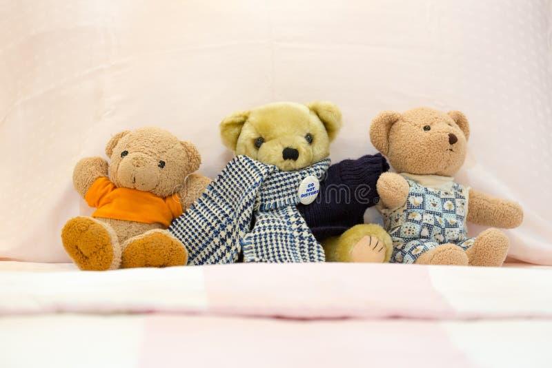 Drei Teddybärpuppen stockfotografie