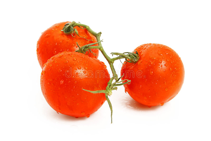 Drei Tomaten lizenzfreies stockbild