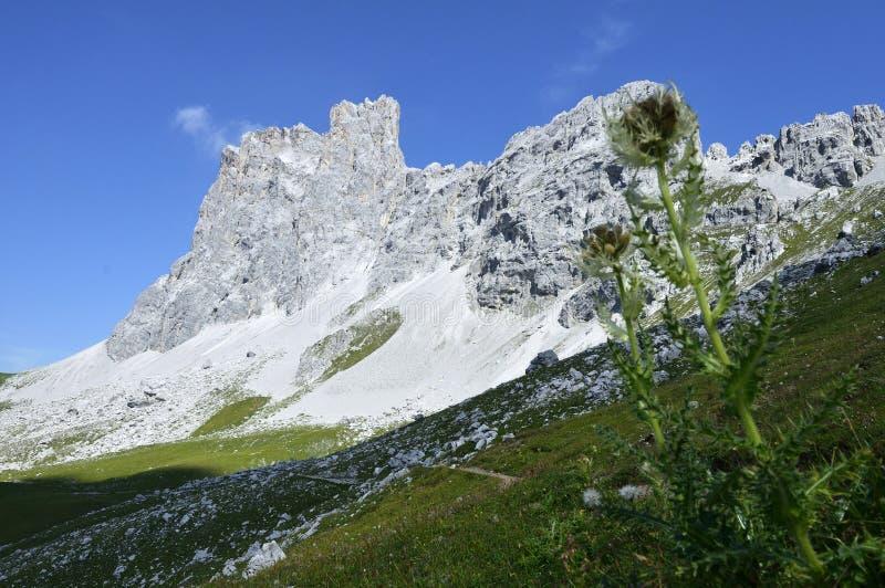 Drei Turme, Drusenfluhgruppe, Ratikon, Switzerland royalty free stock photos