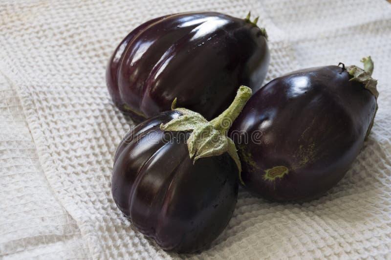 Drei Vergewaltigungsauberginen legen auf den weißen Hintergrund Autumn Vegetables Köstliches und gesundes Lebensmittel stockfotografie