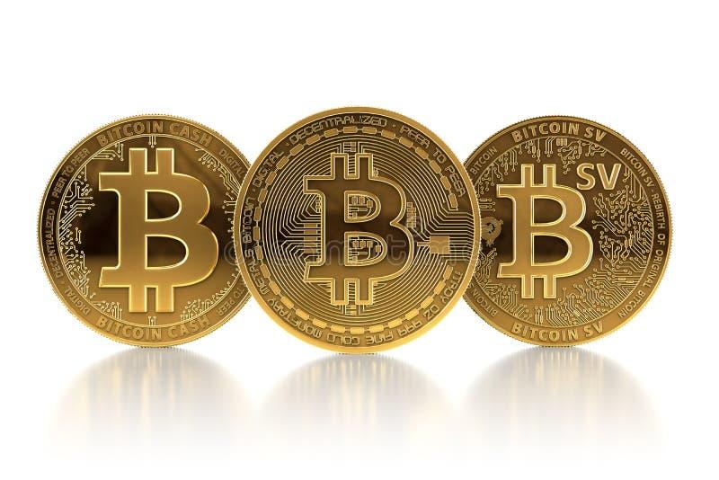 Drei verschiedene Bitcoin-Münzen nach Gabeln Bitcoin BTC, das Konzept Bitcoin-Bargeldes BCH und Bitcoin Satoshi Vision BSV gegenü vektor abbildung