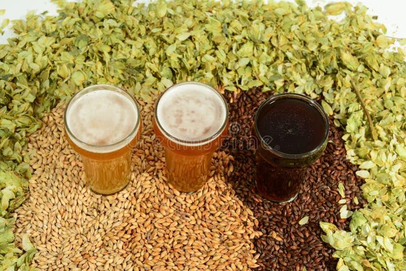 Drei verschiedene farbige Biere lizenzfreie stockbilder