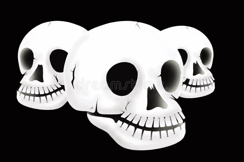 Drei weiße Schädel lizenzfreie abbildung
