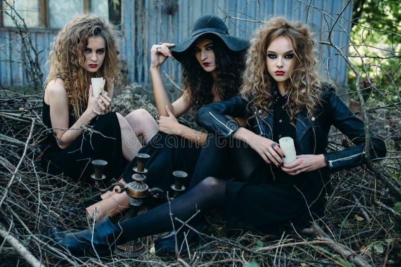 Drei Weinlesefrauen als Hexen stockfotografie
