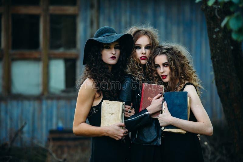 Drei Weinlesefrauen als Hexen lizenzfreies stockbild