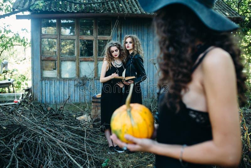 Drei Weinlesefrauen als Hexen stockfotos