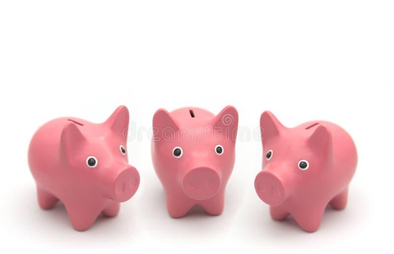 Drei wenig Sparschwein auf weißem Hintergrund stockfoto