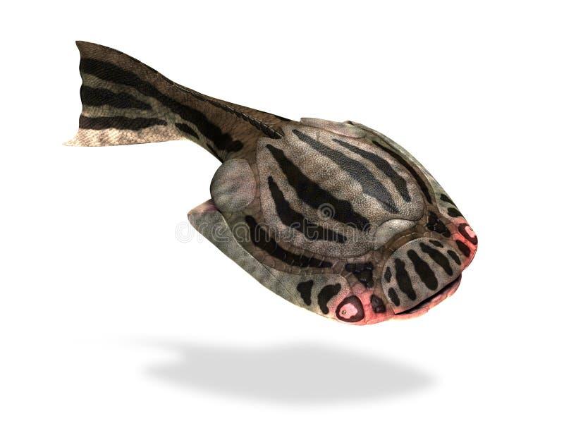 Drepanaspis - pescado prehistórico ilustración del vector